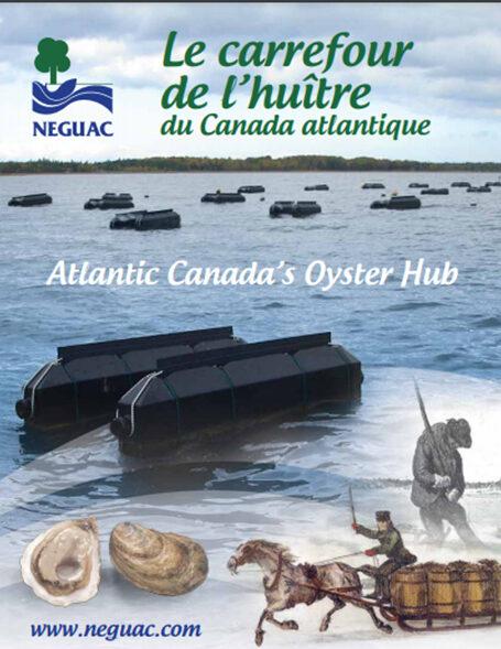 Atlantic Canada's Oyster Hub